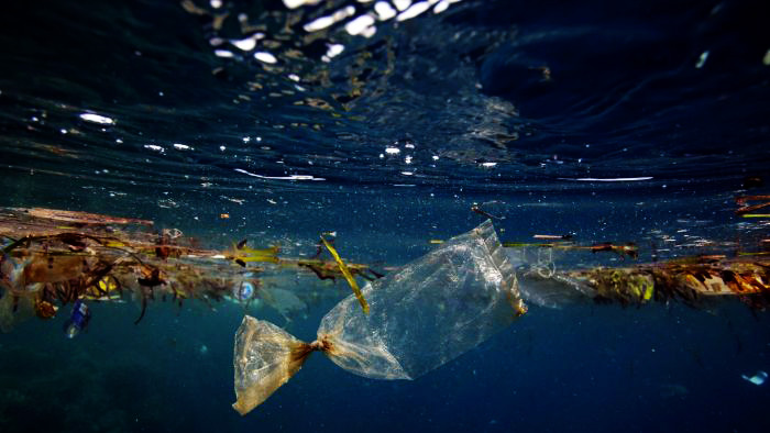 Plastic harms our environment – Facts and figures